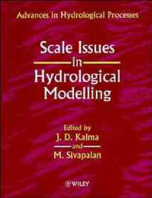 Scale Issues in Hydrological Modelling image