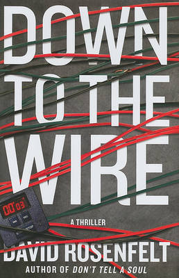 Down to the Wire by David Rosenfelt image