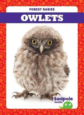 Owlets by Genevieve Nilsen