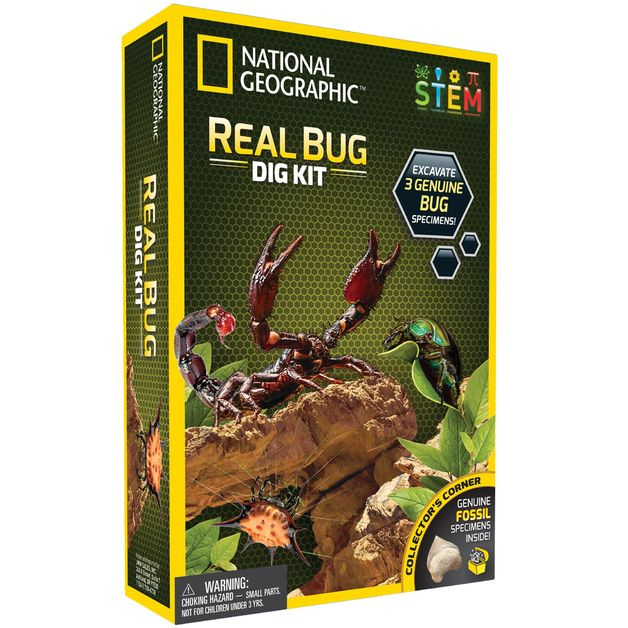 National Geographic: Real Bug Dig Kit