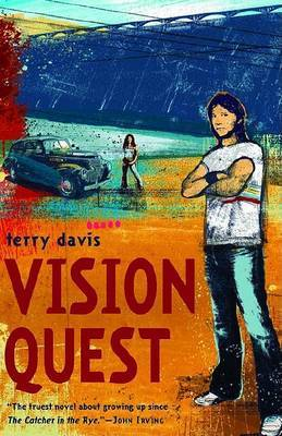 Vision Quest by Terry Davis image