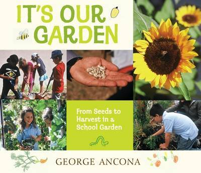 It's Our Garden: From Seeds to Harvest in a School Garden by Ancona George