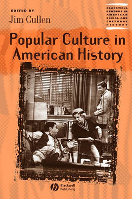 Popular Culture in American History image