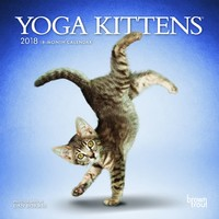 Yoga Kittens 2018 Mini Wall Calendar