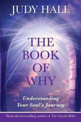 The Book of Why by Judy H. Hall image