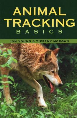 Animal Tracking Basics by Jon Young image