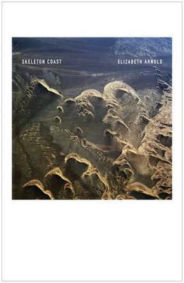 Skeleton Coast by Elizabeth Arnold image