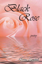 Black Rose by Donna Campbell