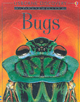 Bugs by Rosie Dickins