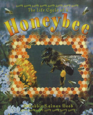 The Life Cycle of a Honeybee by Bobbie Kalman