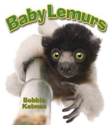 Baby Lemurs by Bobbie Kalman image