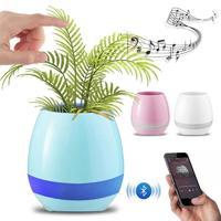 Smart Pot Blue