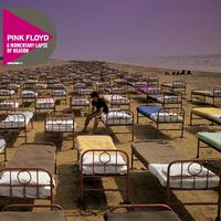 A Momentary Lapse Of Reason (Discovery Edition) [Remastered 2011] by Pink Floyd