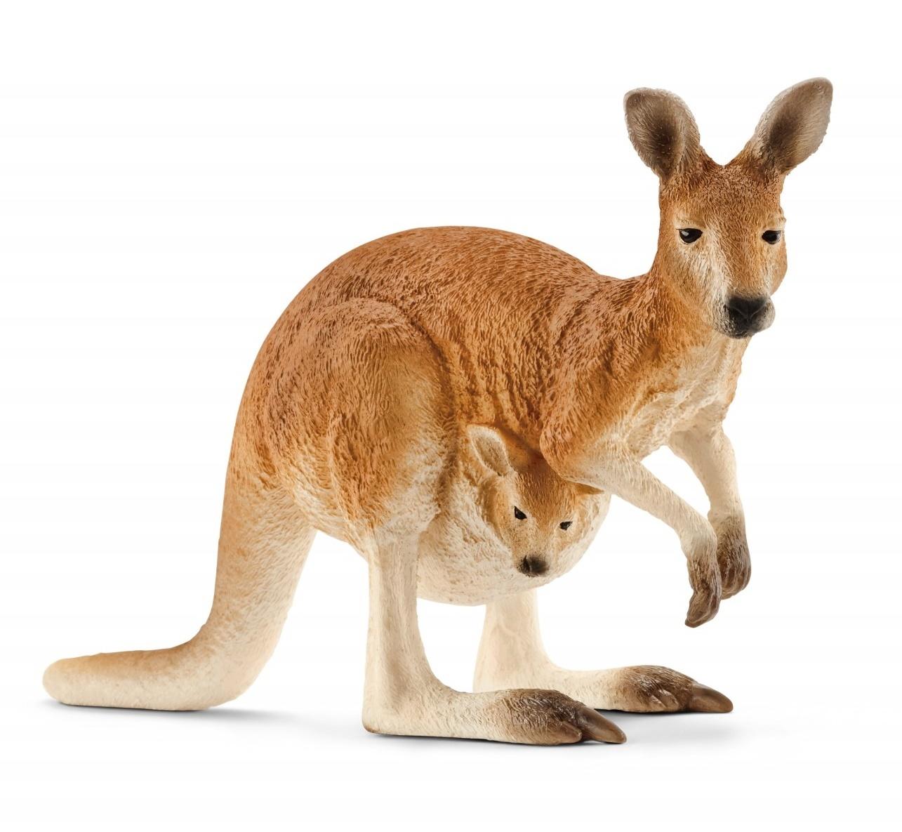 Schleich: Kangaroo image