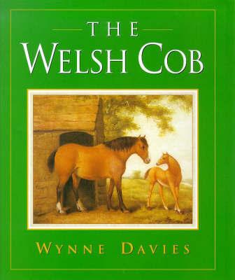 The Welsh Cob by Wynne Davies