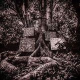 "Harmony Of Difference (12"") by Kamasi Washington"
