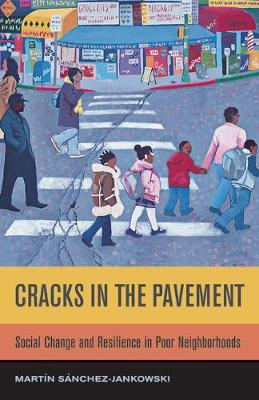 Cracks in the Pavement by Martin Sanchez-Jankowski image