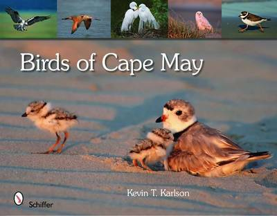 Birds of Cape May, New Jersey by Kevin T Karlson
