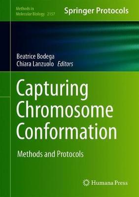 Capturing Chromosome Conformation