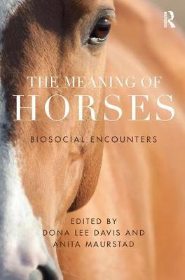 The Meaning of Horses image