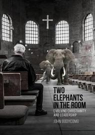 Two Elephants in the Room by John Bodycomb