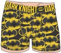 DC Comics: Batman All Over Print - Boxer Briefs (2XL)