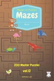 Master of Puzzles - Mazes Book 200 Master Puzzles Vol.12 by James Lee