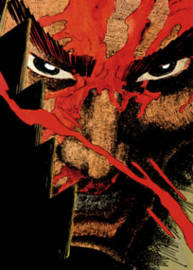 Ronin The Deluxe Edition by Frank Miller