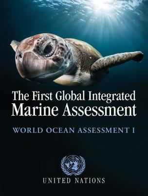 The First Global Integrated Marine Assessment