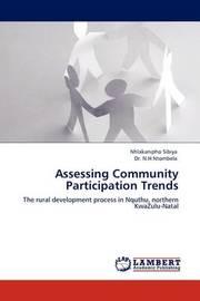 Assessing Community Participation Trends by Nhlakanipho Sibiya