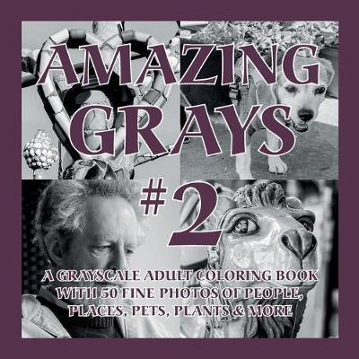 Amazing Grays #2 by Islander Coloring