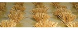 Detachable Wheat Bushes (HO Scale) 30 pack