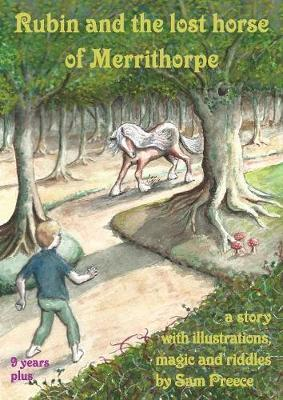 Rubin and the Lost Horse of Merrithorpe by Sam Preece image