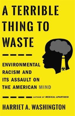 A Terrible Thing to Waste by Harriet A Washington image