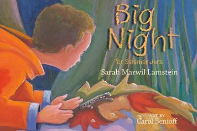 Big Night for Salamanders by Sarah Marwil Lamstein image