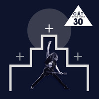 Sonic Temple - 30th Anniversary Edition by The Cult image