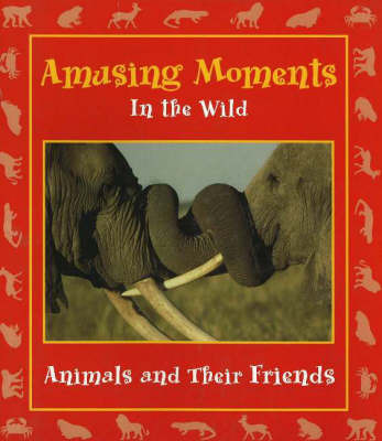 Amusing Moments in the Wild by Stephanie Maze