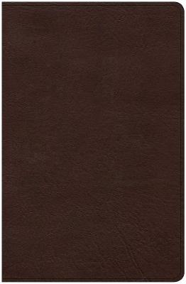 CSB Ultrathin Bible, Brown LeatherTouch by Csb Bibles by Holman