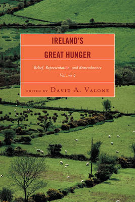 Ireland's Great Hunger: v. 2 image