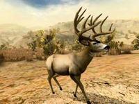 Cabela's Outdoor Adventures for Xbox