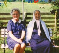 Theory of Colours (LP) by Dauwd image
