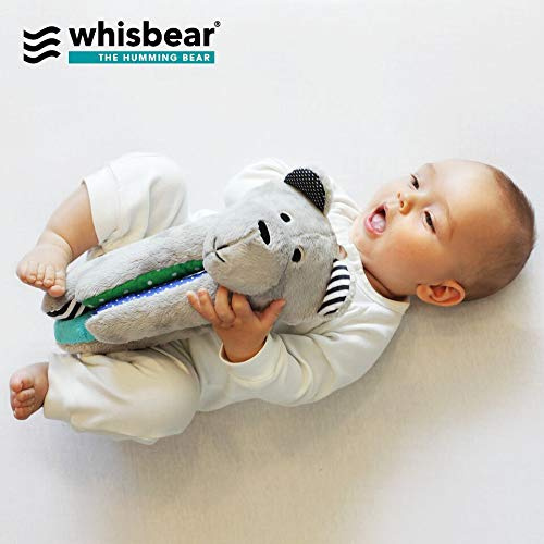 Whisbear: Humming Sensory Bear - Watermelon image