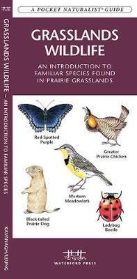 Grasslands Wildlife: An Introduction to Familiar Species Found in Prairie Grasslands by Senior Consultant James Kavanagh (Senior Consultant, Oxera Oxera Oxera)