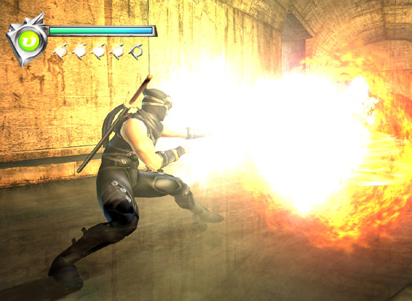 Ninja Gaiden for Xbox image