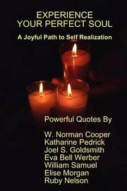 Experience Your Perfect Soul by Joel S Goldsmith