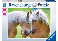 Ravenburger - A Moment Together Puzzle (1000pc)