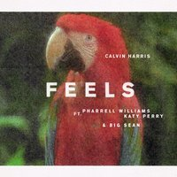 Feels by Calvin Harris