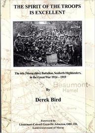 The Spirit of the Troops is Excellent by Derek Bird