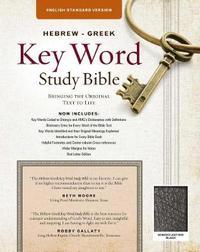 The Hebrew-Greek Key Word Study Bible by Warren Patrick Baker image