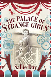The Palace of Strange Girls by Sallie Day image